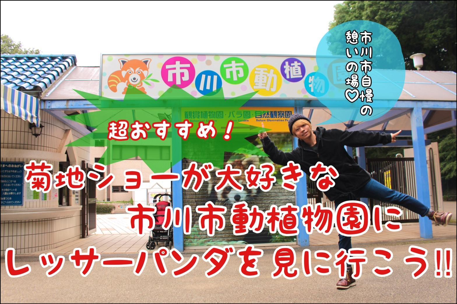 【メンバー個人プラン:菊地ショー】