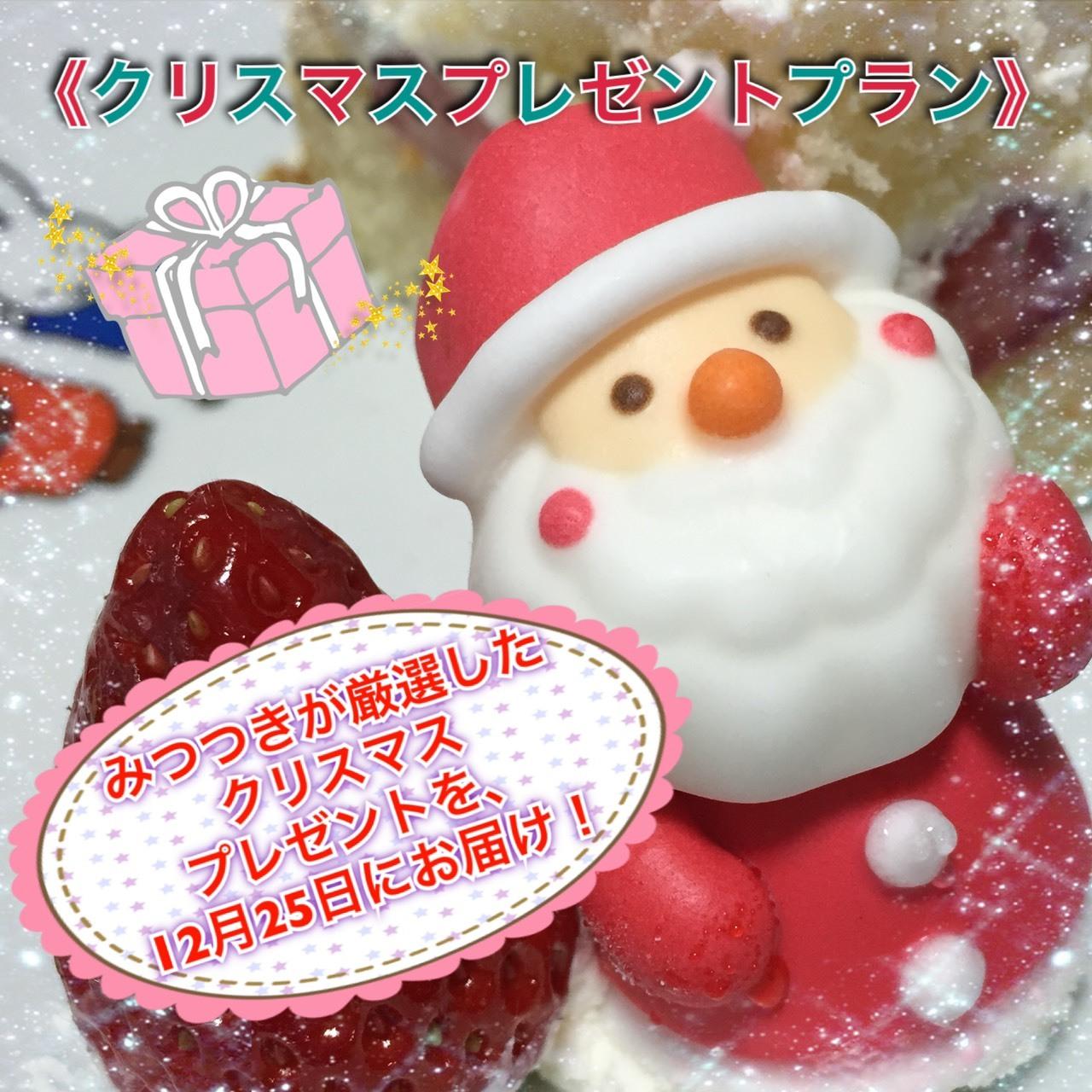 好評につき追加!!<クリスマスプレゼントプラン>