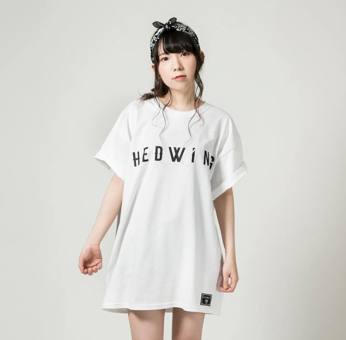 <HEDWiNG Tシャツプラン>