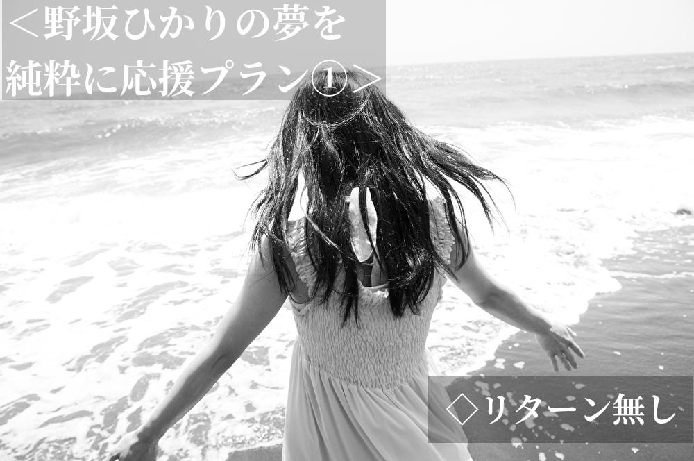 <野坂ひかりの夢を純粋に応援プラン①>