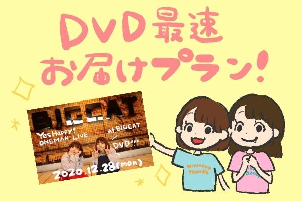 <DVD最速お届け プラン>