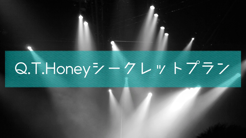 Q.T.Honey シークレットプラン [限定15名]