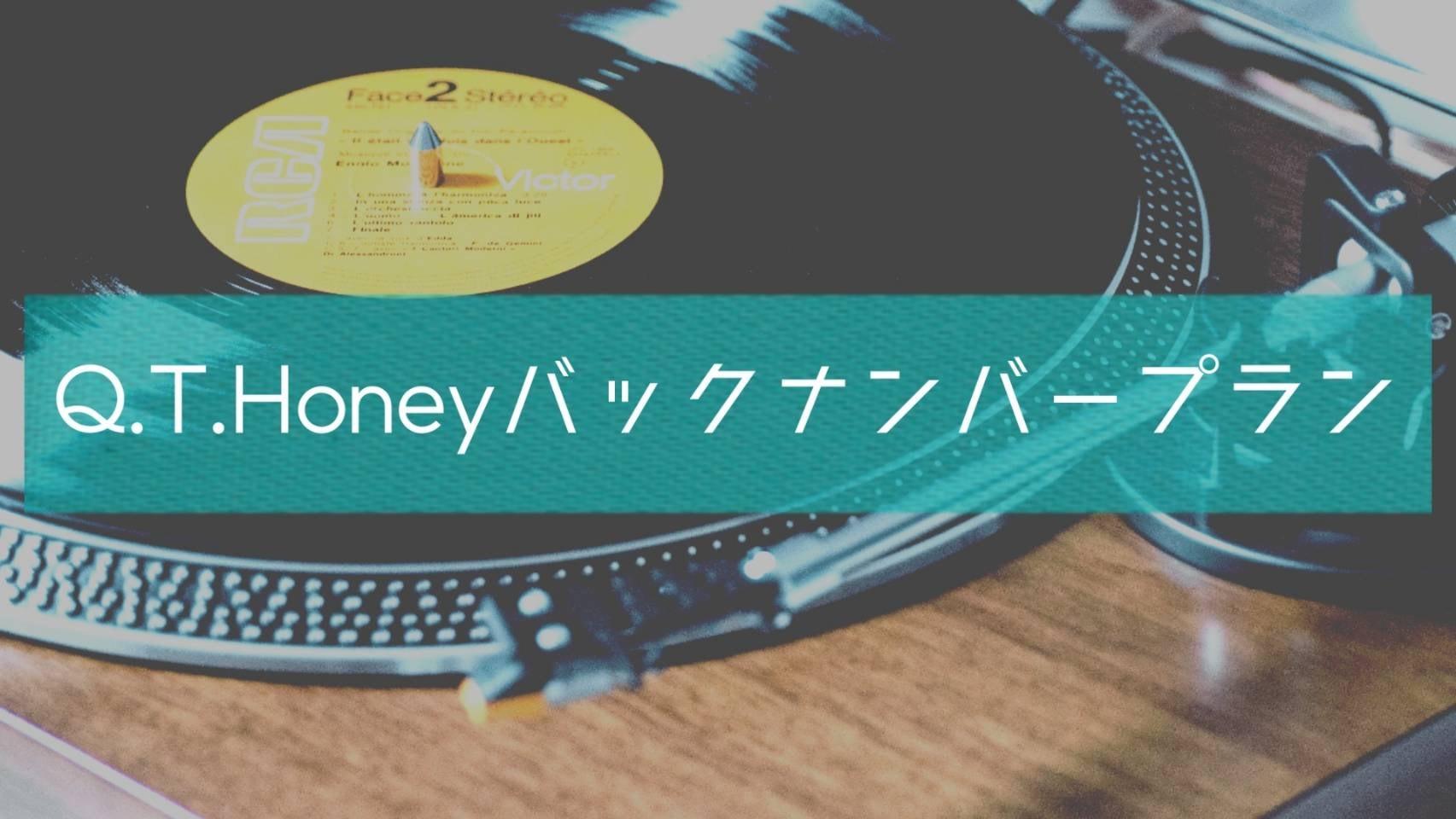 ☆〜追加プラン〜〈Q.T.Honey バックナンバープラン〉