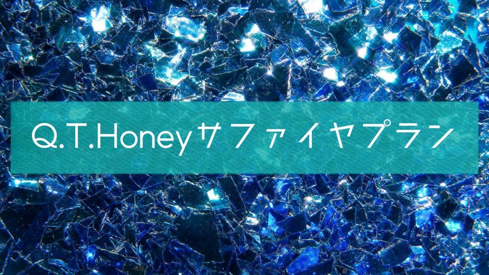 ☆〜追加プラン〜〈Q.T.Honeyサファイアプラン〉限定5名