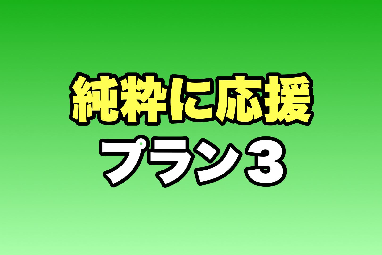 <応援 プラン 3>