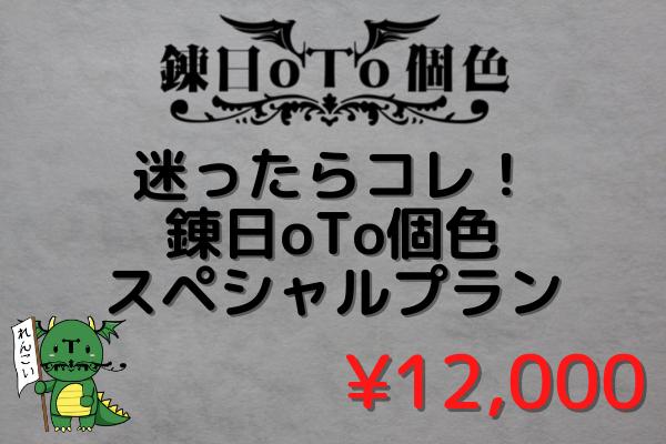 <【迷ったらコレ!】 錬日oTo個色スペシャル プラン>