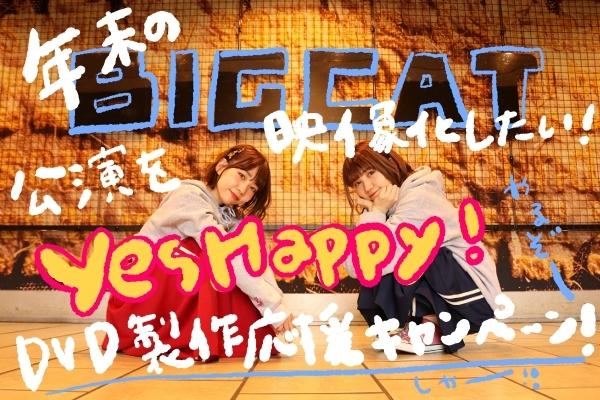年末のBIG CAT公演を映像化したい!YesHappy!DVD制作応援キャンペーン!